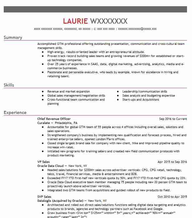 chief revenue officer resume example times publishing company clymer new digital polymer Resume Chief Digital Officer Resume