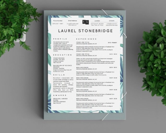 classy resume designs template cover letter for design adobe spark examples kindergarten Resume Adobe Spark Resume Examples