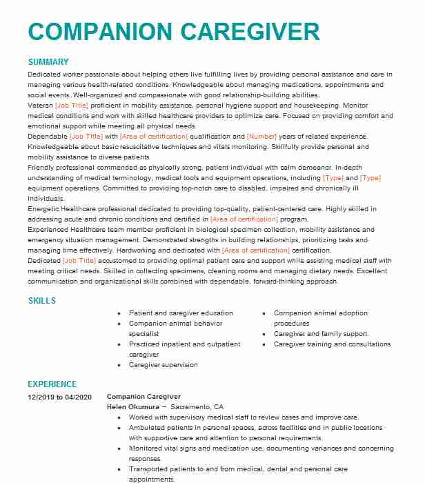 companion caregiver resume example resumes livecareer patient account manager summary Resume Patient Companion Resume