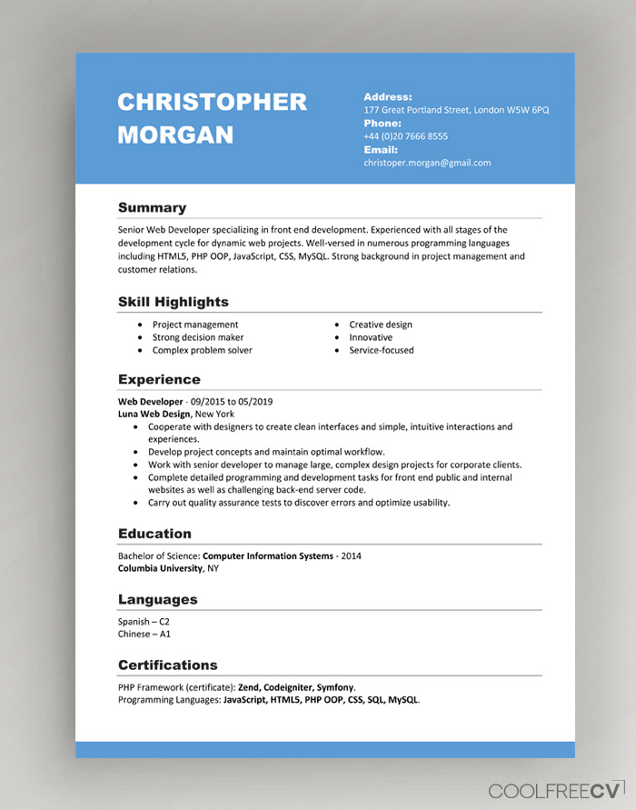 cv resume templates examples word professional design template with one company multiple Resume Professional Resume Design