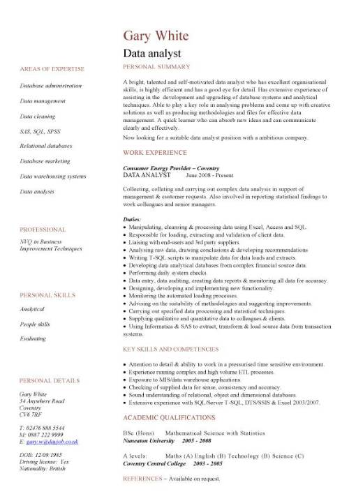 data analyst cv sample experience of analysis and migration writing analytics profile Resume Analytics Profile Resume