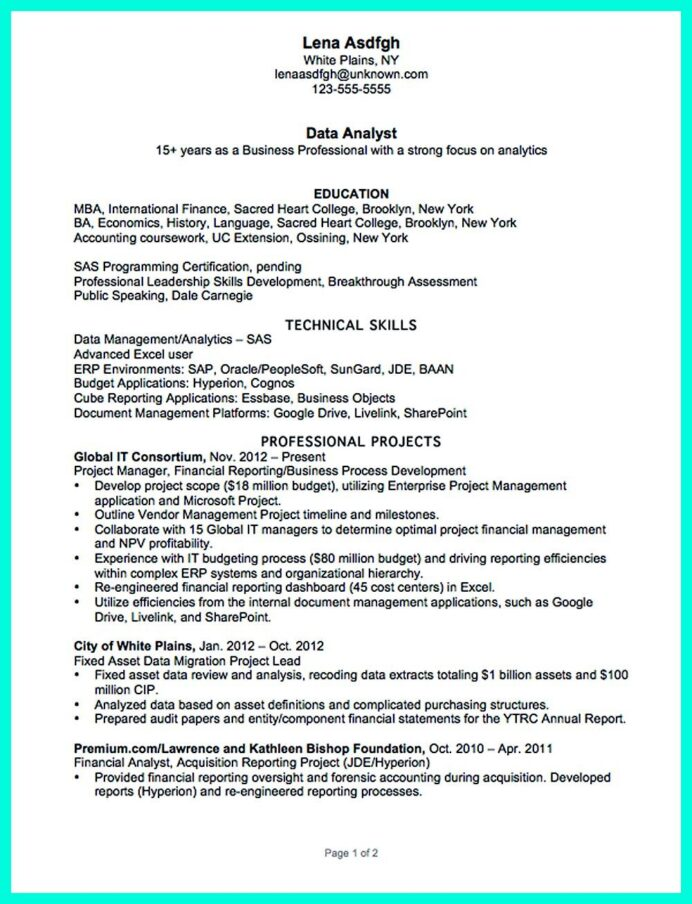 data analyst resume describe your professional profile skills education and experience Resume Analytics Profile Resume