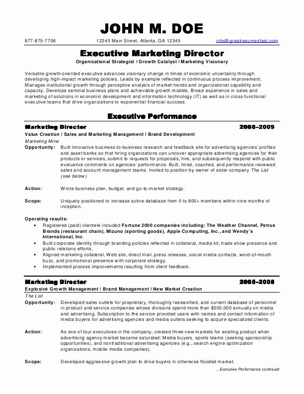 director of marketing resume unique sample resumes professional samples job examples best Resume Best Resume For Marketing Job