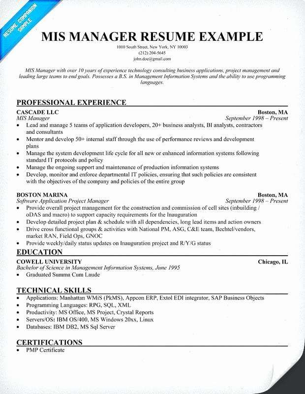 excel format resume template word examples words mis executive typing up for job server Resume Mis Executive Resume Excel