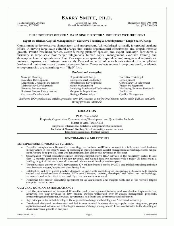 executive cv writing services resume professional template templates csm sample rate Resume Professional Executive Resume Writing Services