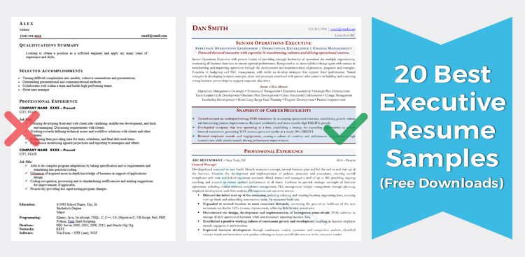 executive resume samples director vp level senior examples sample accounting summary Resume Senior Executive Resume Examples