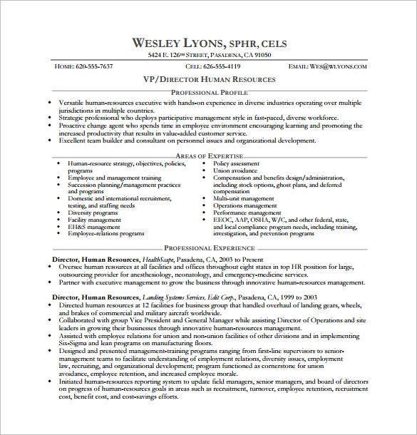 executive resume template free word excel pdf format premium templates mis hr director of Resume Mis Executive Resume Excel
