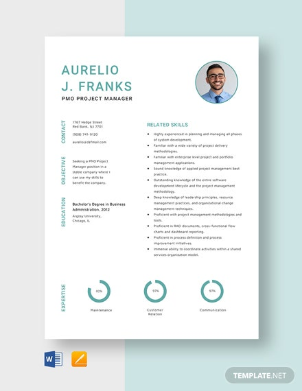 free designer resume cv template word indesign pmo project manager senior vice president Resume Pmo Project Manager Resume
