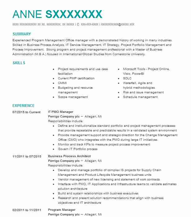 it pmo manager resume example perrigo company plc project landscaping job child care Resume Pmo Project Manager Resume