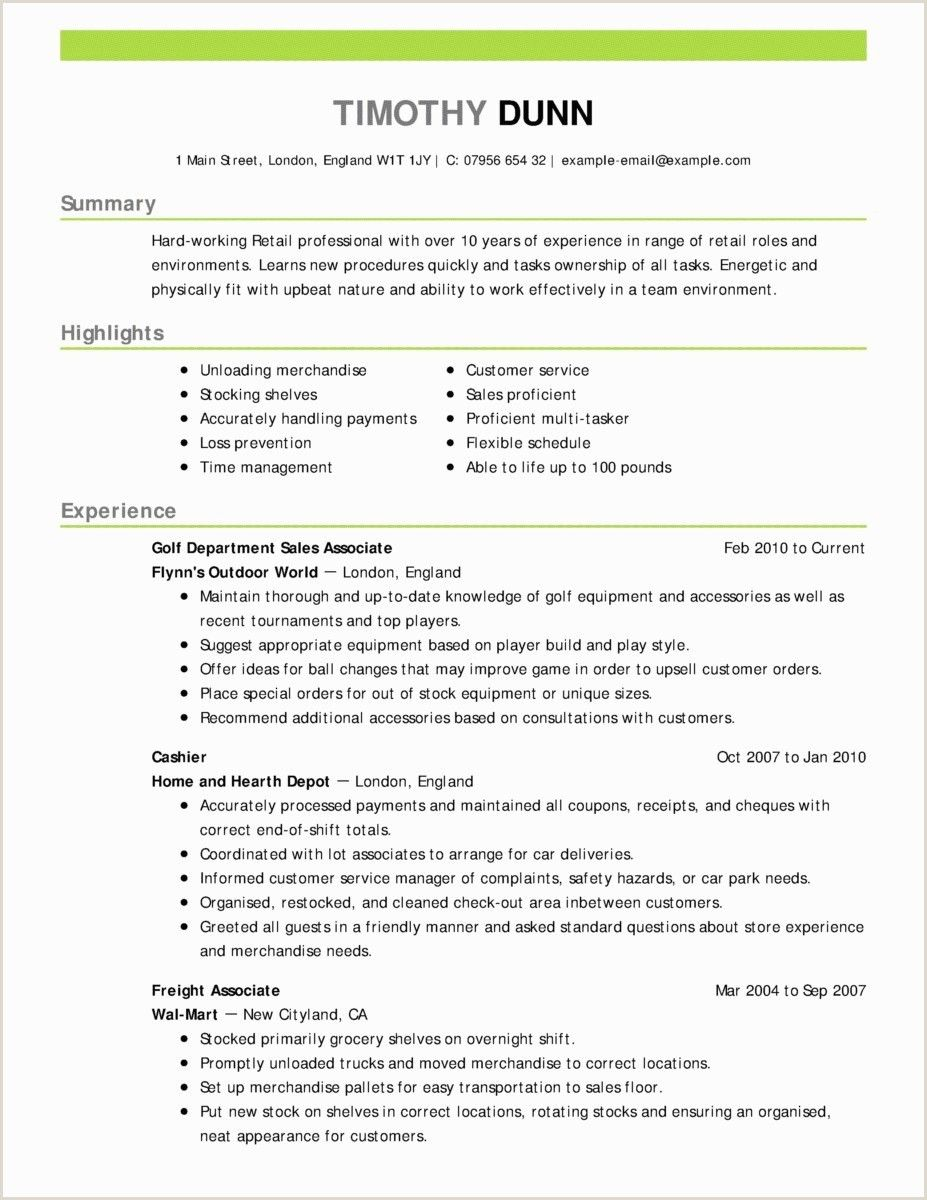professional cv format word document resume objective examples good skills normal for Resume Normal Objective For Resume