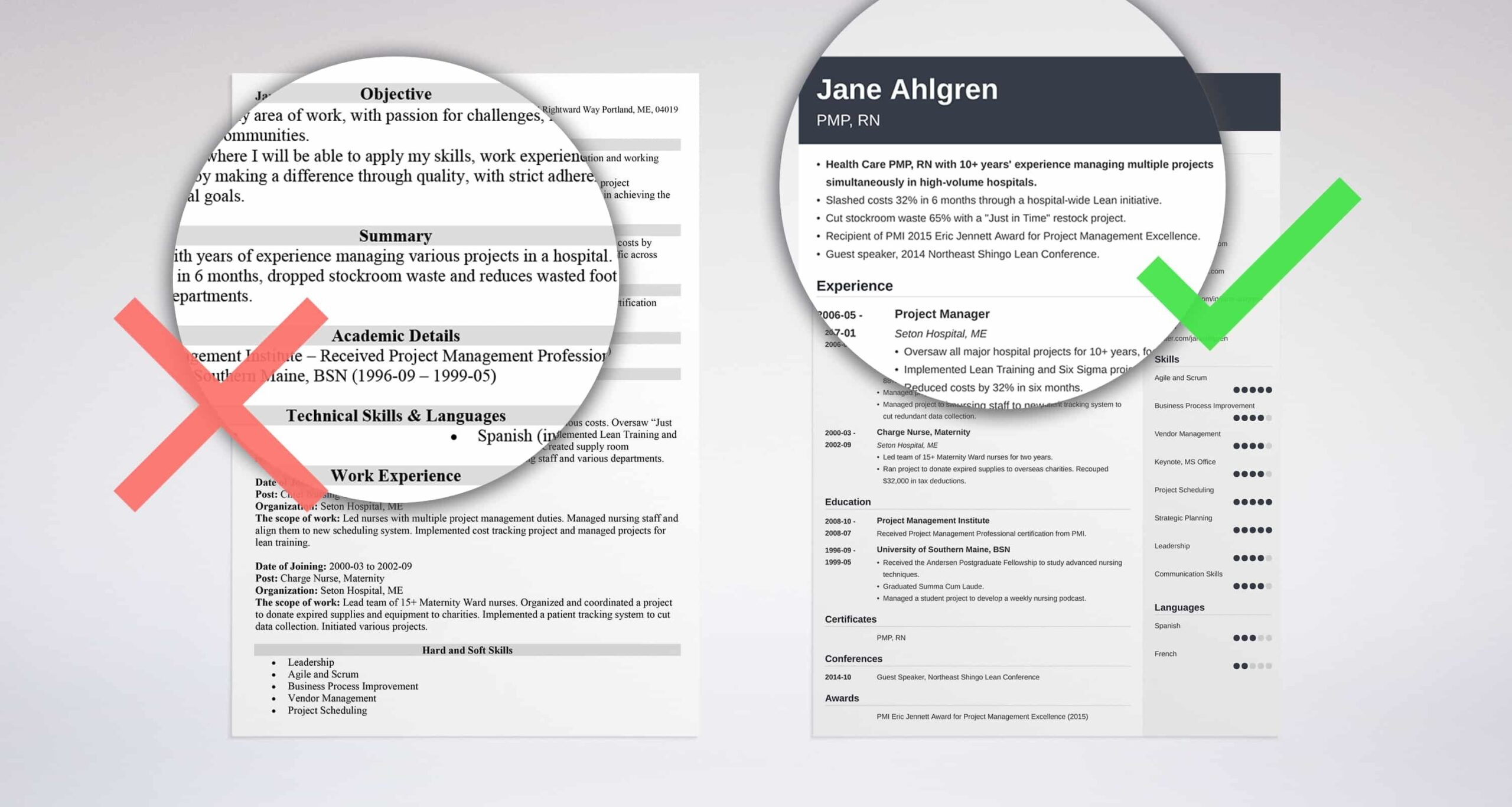 professional resume summary examples statements brief background for addendum controller Resume Brief Background Summary For Resume