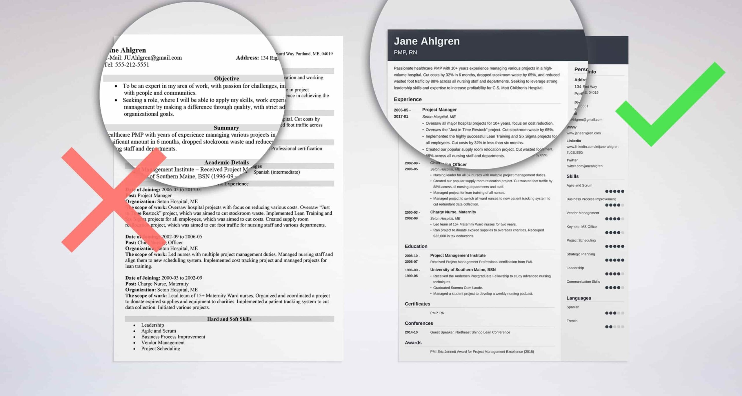 professional resume summary examples statements good for example salesforce administrator Resume Good Summary For Resume