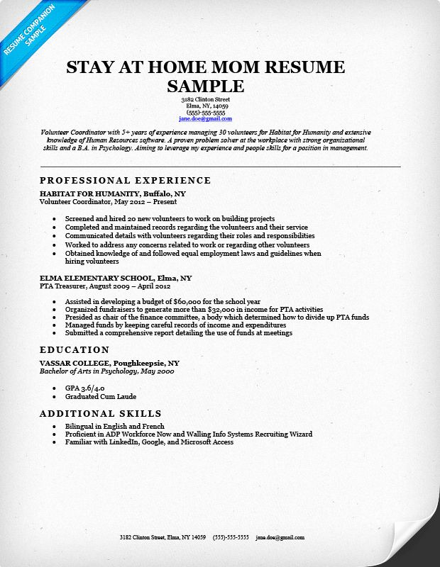 reentering the workforce resume examples best of back to work dscmstat basic cv janitor Resume Reentering The Workforce Resume Examples