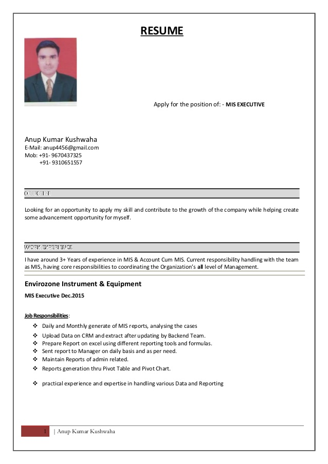 resume for mis executive excel server skills investment banking sample recruiter summary Resume Mis Executive Resume Excel