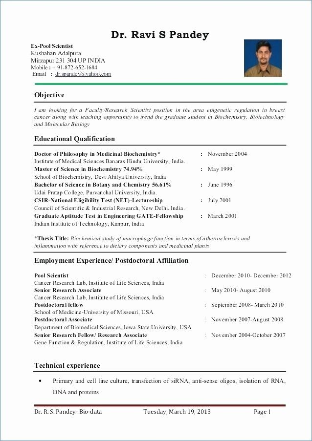 resume format for zoology lecturer teacher template examples english objective high Resume English Lecturer Resume