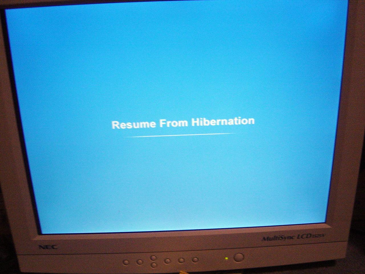 resume from hibernation screen in xp sp3 betaarchive win or free templates printing for Resume Win 10 Resume From Hibernation