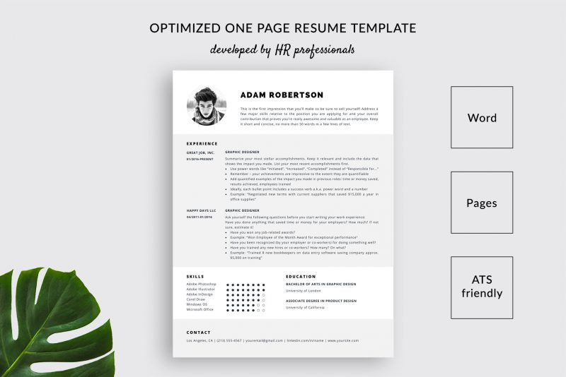 resume template and cover letter adam ats friendly free one templatehippo 800x534 using Resume Ats Friendly Resume Template Free 2019
