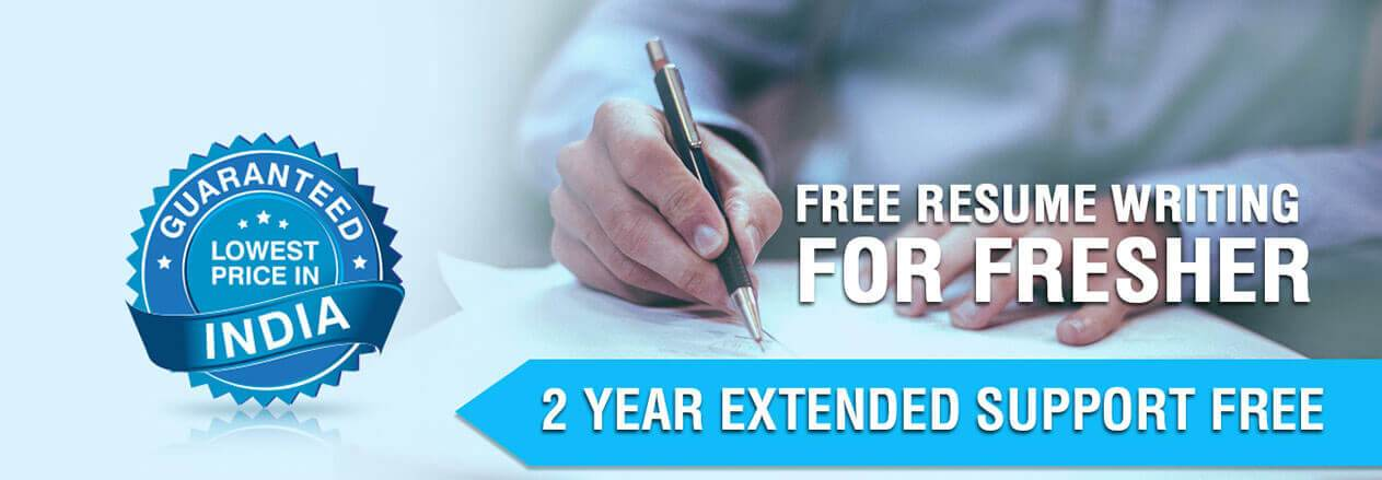 resume writing services in delhi cv free good and professional hockey player program Resume Free Resume Writing Services