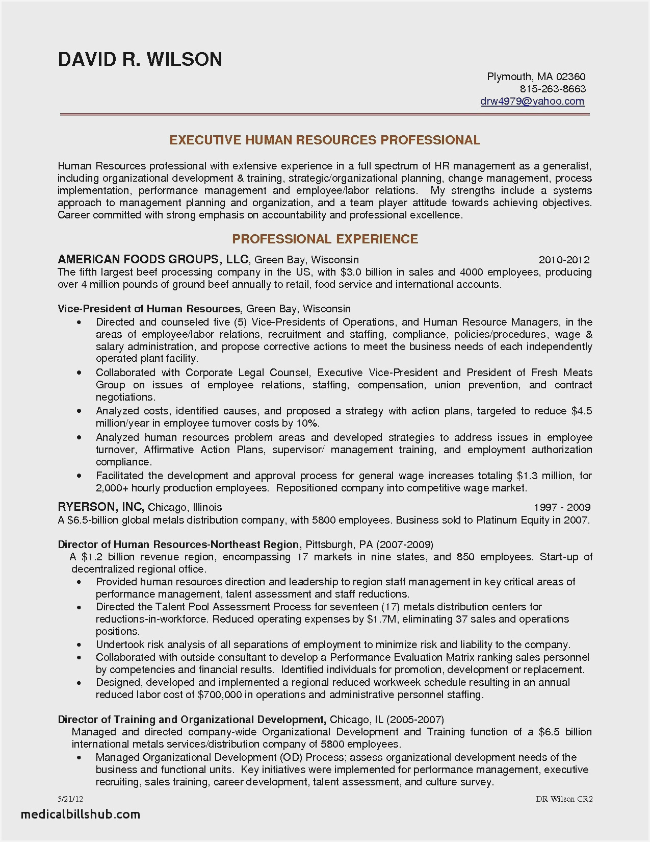 senior executive resume format sample examples accounts fund accountant can you put Resume Senior Executive Resume Examples