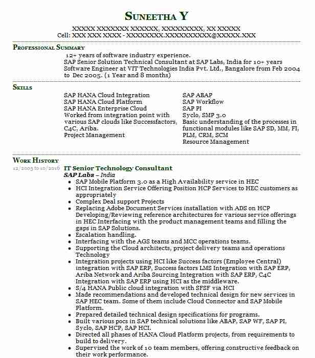 senior technology consultant resume example deloitte consulting llp federal cary north Resume Technology Consultant Resume Sample