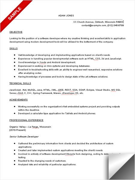 software developer resume sample objective skills engineering examples introduction loss Resume Software Developer Resume Introduction