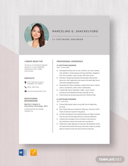 software engineer resume example free word pdf documents downlaod premium templates Resume Resume Format For Computer Engineer