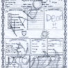 D&d Character Sheet Resume