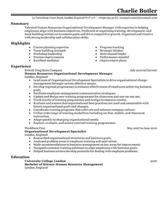 amazing human resources resume examples livecareer rights objective organizational Resume Human Rights Resume Objective