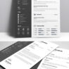 best cv template resume examples layout food job experience with software on special Resume Best Resume Layout 2019