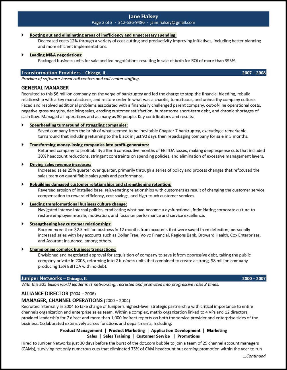 ceo president general manager resume distinctive career services for position template Resume Resume For General Manager Position
