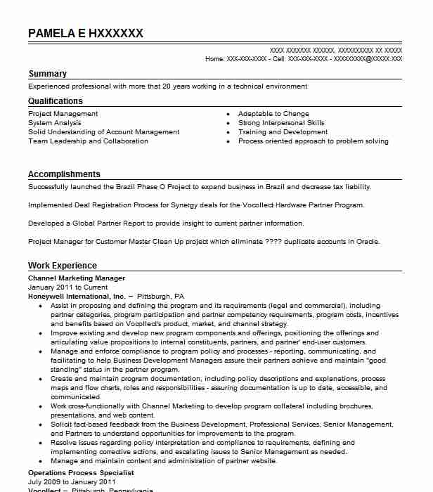 channel marketing manager resume example resumes livecareer self employed handyman sample Resume Channel Marketing Resume
