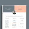 clean resume template free artist blu research technician sample format for experienced Resume Artist Resume Template Free Download