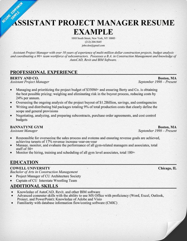customer project manager resume riez sample resumes knowledge management entry level Resume Knowledge Management Resume Sample