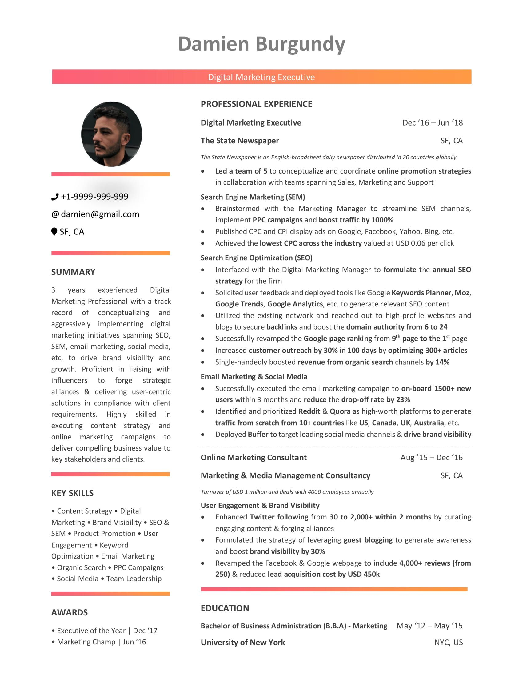 digital marketing resume guide with samples and examples sample free professional builder Resume Digital Marketing Resume Sample