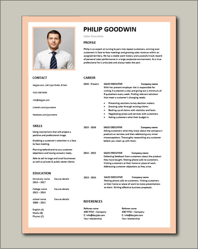 executive cv template example marketing revenue incentive services resume word free Resume Executive Resume Template Word