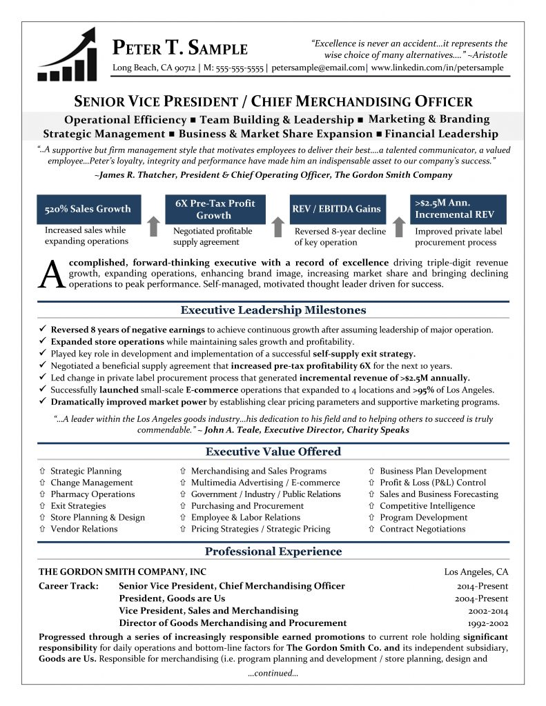 executive resume service it writers sampleres 791x1024 debt collector layout jewelry Resume Resume Writers Long Island