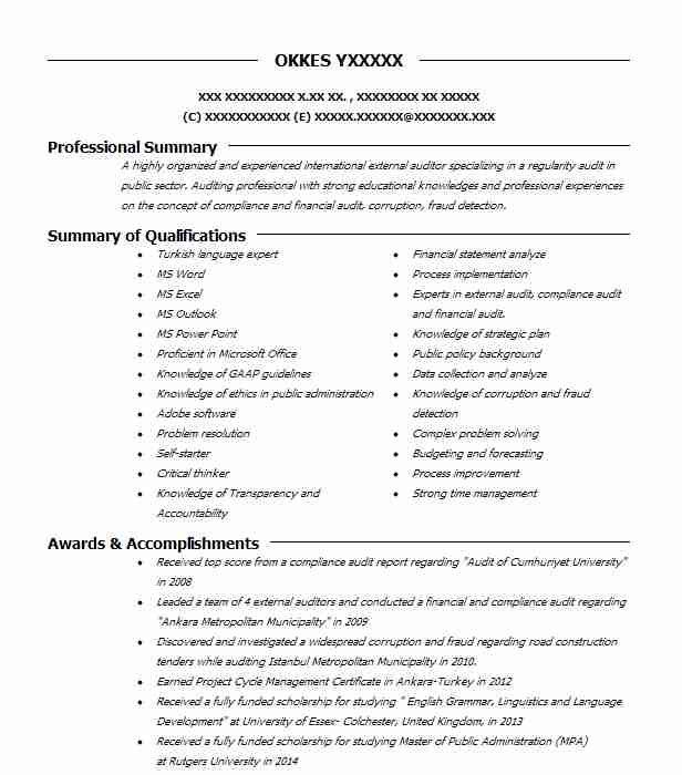 external auditor resume example resumes livecareer career objective for nursing format Resume Career Objective For Auditor Resume