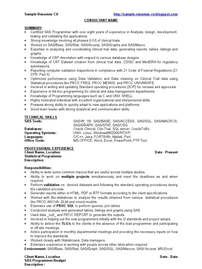 free creative resume templates excel programmer sap security administrator computer Resume Excel Programmer Resume