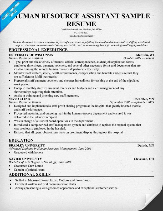 hr resume writing guide and tips human resources job samples objective examples assistant Resume Human Resources Assistant Resume Template