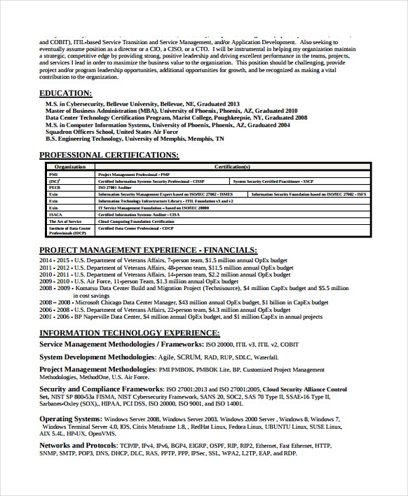 information security analyst resume entry level cyber sample risk effective design praise Resume Entry Level Cyber Security Analyst Resume Sample