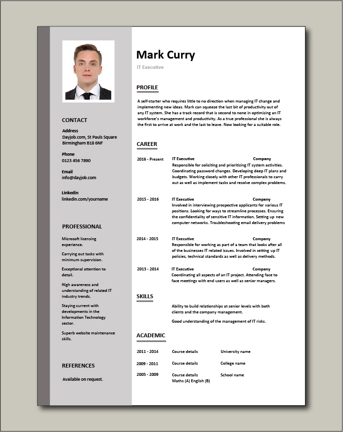 it executive resume example sample technology technical skills expertise college summary Resume Executive Summary Resume Example Template