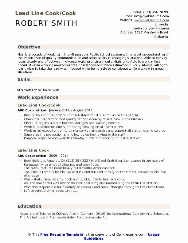 line resume objective examples unique lead samples medical coder sample now reviews Resume Lead Line Cook Resume Sample