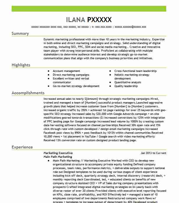 marketing executive resume example resumes livecareer sample format for construction Resume Sample Resume Format For Marketing Executive
