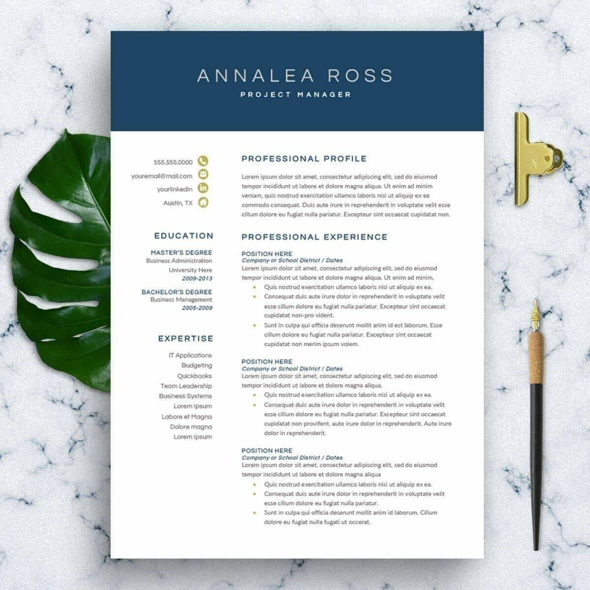 modern resume template format examples for contemporary templates intro software engineer Resume Contemporary Modern Resume Template
