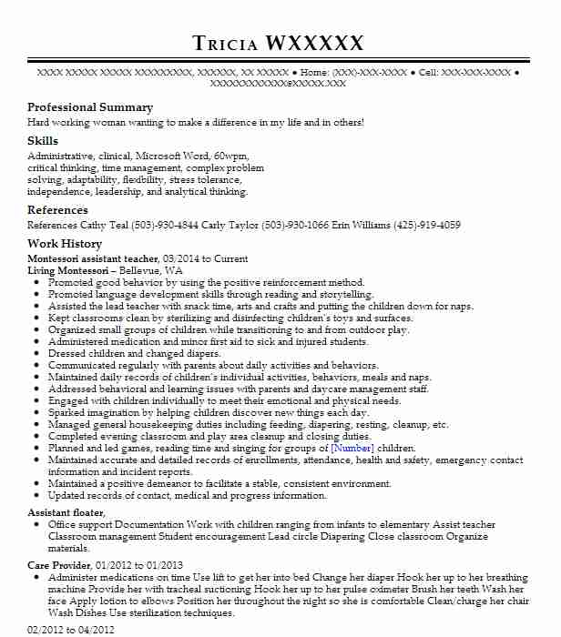 montessori teacher assistant resume example chicago board of education objective human Resume Montessori Teacher Resume Objective