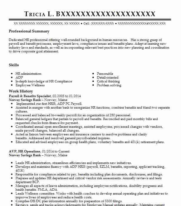 peoplesoft hcm benefits and payroll consultant resume example loraine county community Resume Peoplesoft Payroll Resume