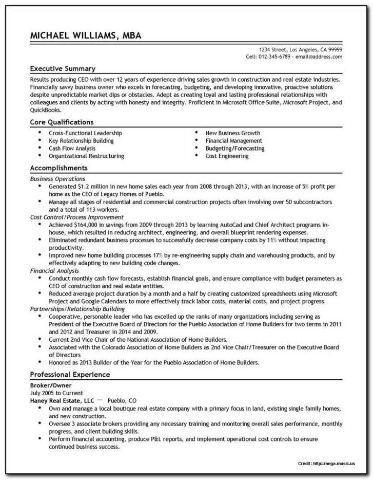 professional resume writers vincegray2014 services objective for bpo web developer Resume Resume Writers Long Island