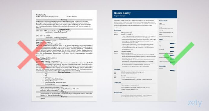 program manager resume examples template guide director sample example action verbs for Resume Program Director Resume Sample