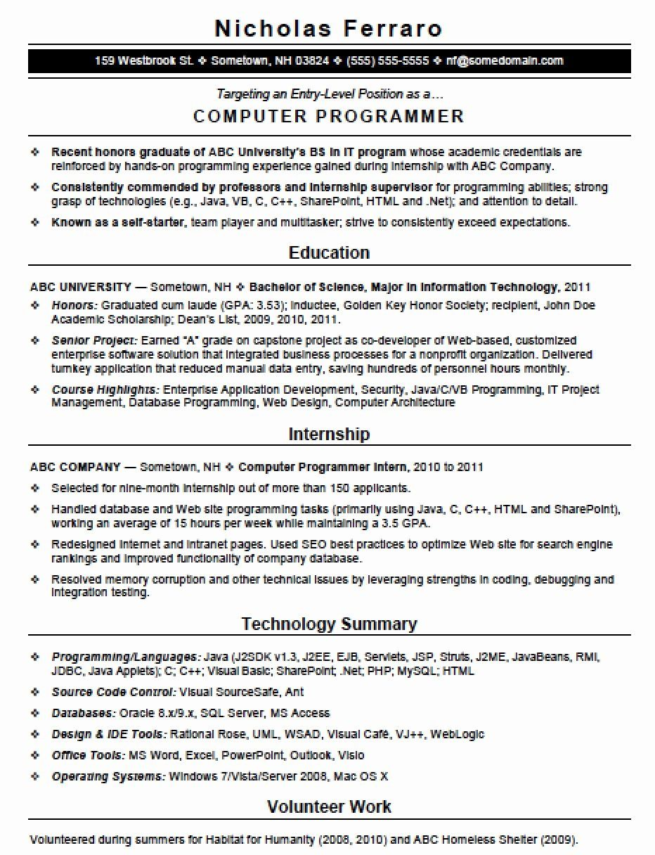 programmer resume no experience printable template word skills excel great examples for Resume Excel Programmer Resume