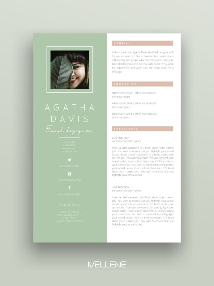 resume cv template and cover letter personal branding design professional applicati Resume Typography Resume Template